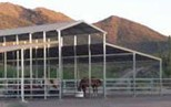 Open Plan Steel Horse Shelter