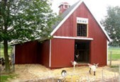 Small Pole-Barn for Pet Goats