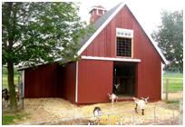 Small Pole Frame Goat Barn