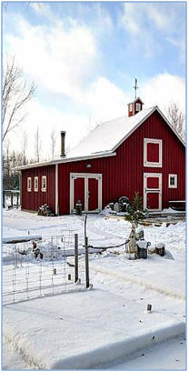 Build an Inexpensive Small Pone Barn - Click to see samples