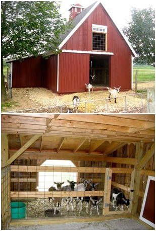 Customers 39 small pole barn garage and workshop plans for Farm shed ideas