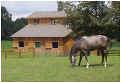 Monitor Roof Horse Barn from plans by HomesteadDesign.com